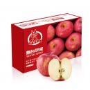 烟台红富士苹果 12个 净重2.6kg以上 单果190-240g 一二级混装