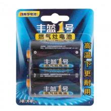 南孚(NANFU)R20P  丰蓝1号燃气灶无汞高功率电池 两粒装