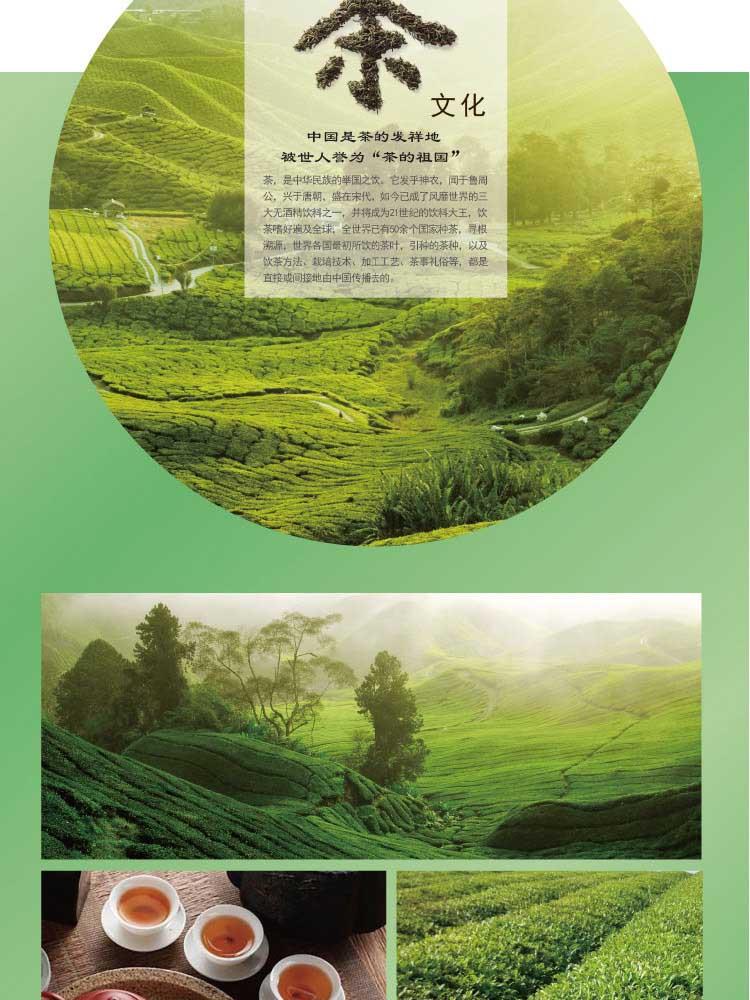 康师傅茉莉清茶5